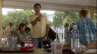 Christopher Knight The Brady Bunch Movie